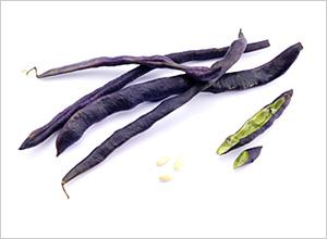 黒インゲン豆(フランス トゥールーズ産)